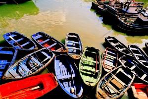 barques_moltes